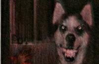 bạn có biết câu truyện smile dog không ? thật ra nó không phải là ảnh của một con chó cười đâu. nó không phải là một bước ảnh, thực tế thì đó là một flie văn bản .doc bởi vì doc với dog tiếng anh người ta đọc giống nhau nên mọi người thời […]