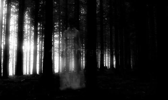 Nơi xa oan hồn kêu gọi – Tác Giả Tấn phạm Đạt